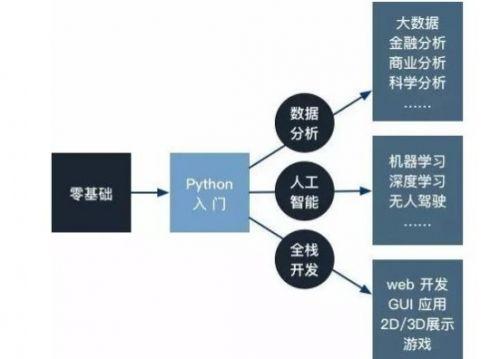 Python能干什么